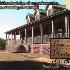 hunting-lodge-abbeville-ga-gumlog.jpg
